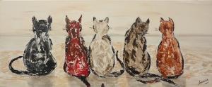 cats-from-Noordwijk